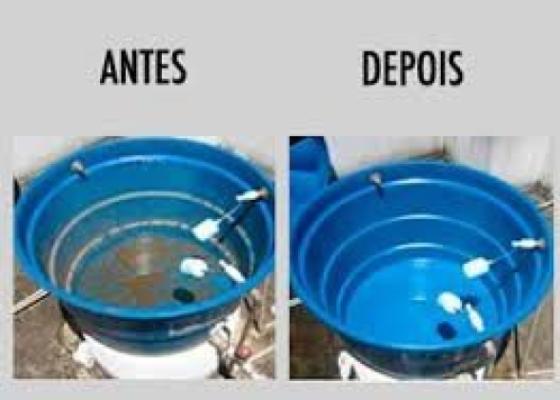 D.D. Júnior - Dedetizadora em Campinas